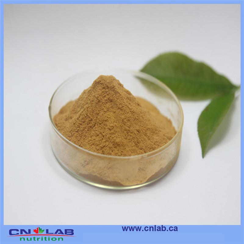 Natural herbal medicine Flavone glycoside 24% ginkgo biloba leaf extract 250g(China (Mainland))