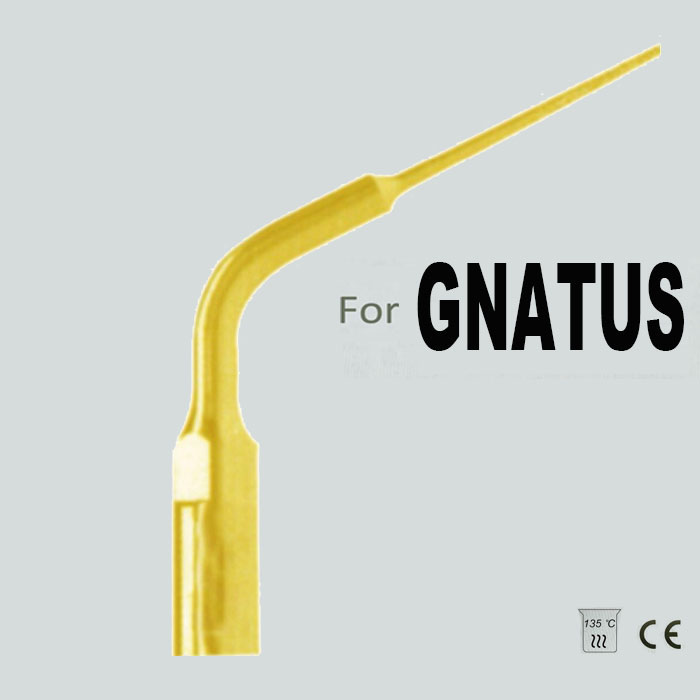 EG5DT, BRASIL GNATUS SCALER TIP, ENDODONTICS TIP, Enlargement TIP of ENDODONTIC canal wall, DIAMOND AND TITANIUM PLATED(China (Mainland))