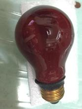 dr fischer 77841422 230v15w CT DR room red bulb 15w 230v E27 photolamp 240 v 15 w photo lamp 230 v 15 w(China (Mainland))