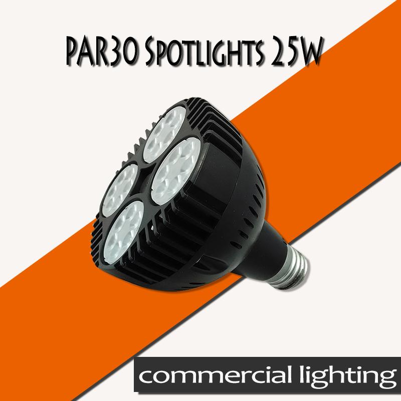 Free shipping par led par30 25W led lamp bulb led spotlight bulb 25pcs 2835 high power leds(China (Mainland))