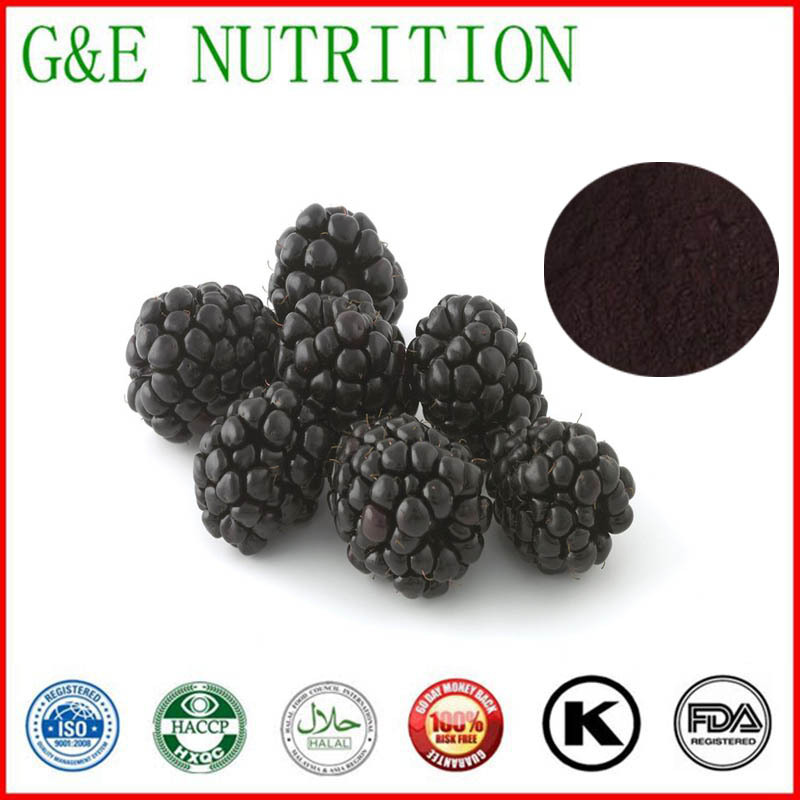 GMP Factory Supply Organic Blackberry extract  10:1   1000g <br><br>Aliexpress