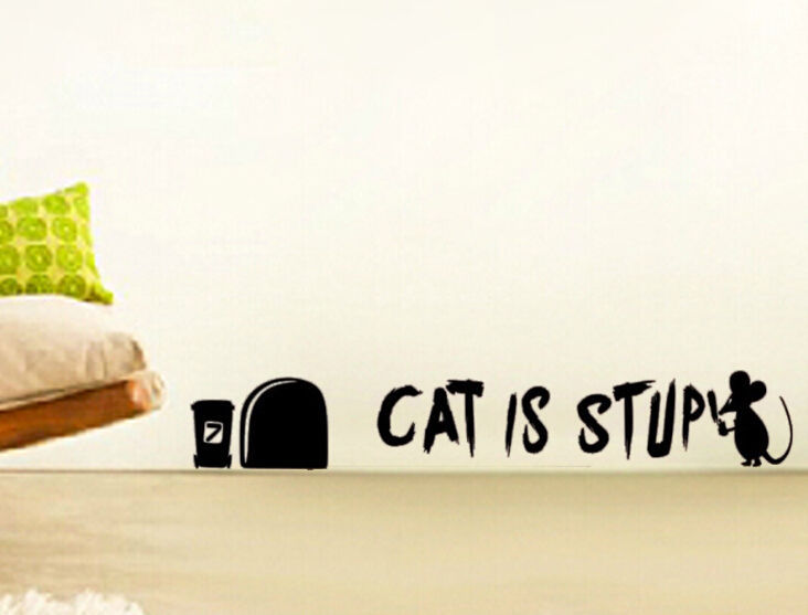 WRITER Funny Wall Decal CAT IS STUPID Stickers Instrumen Art Decor