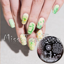 New Stamping Plate hehe64 Flower Dandelion Floral Fresh Nail Style Nail Art Stamp Template Image Transfer