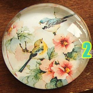 1pcs 25mm Traditional Chinese Painting Fridge Magnet Creative Artistic Bird Crystal Glass Magnetic Sticker Home Decoration D096