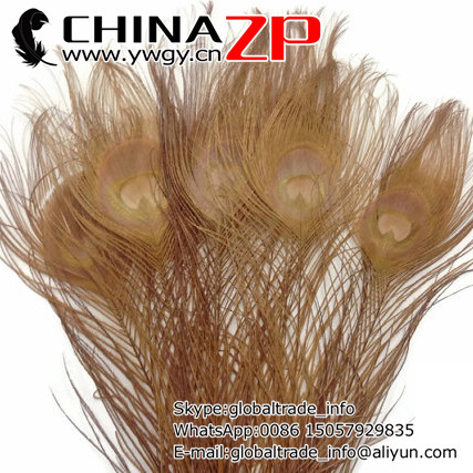 CHINAZP Factory 100pcs/lot Top Quality Full Eye Dyed Light Brown Peacock tail Feathers for Crafts(China (Mainland))
