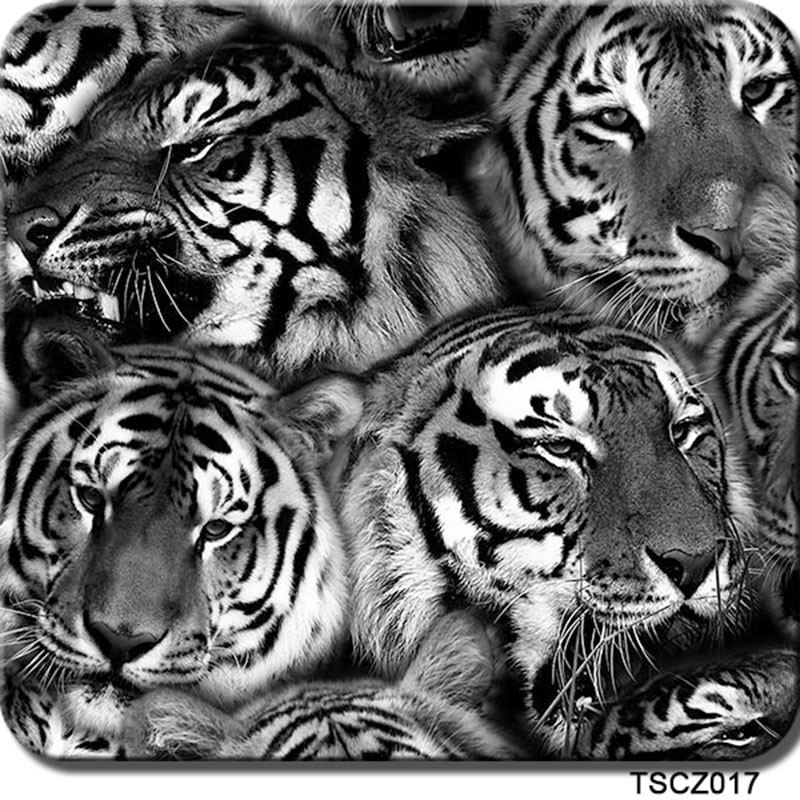 Free shipping 0.5mX2m tiger pattern hydrographic films CSCW1779 water transfer film(China (Mainland))