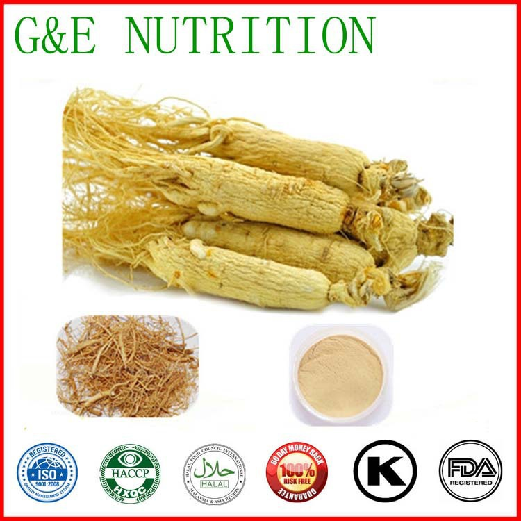 Ginseng Root extract ginsenoside UV 40% powder ginseng extract