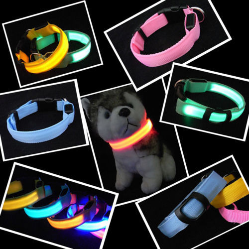 S M L size LED Pet Cat Dog LED Collar Safety Glow Necklace Flashing Lighting