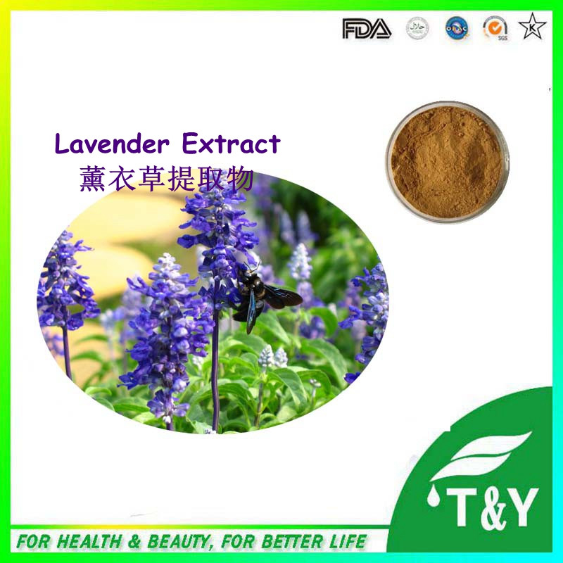 Natural &amp; High quality lavender extract/lavender powder/lavender p.e. 300g/lot<br><br>Aliexpress