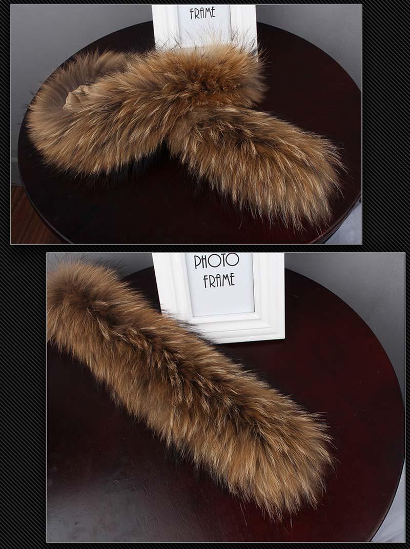 raccoon collar details 1