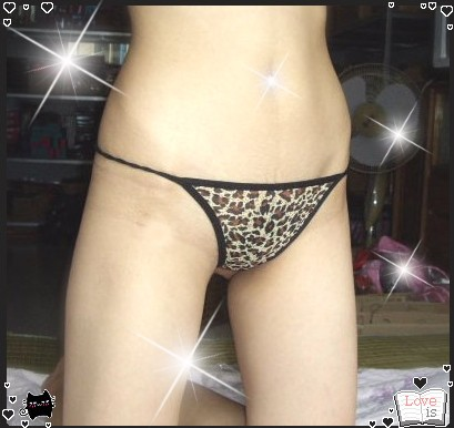 Underwear Women Sexy Panties 2015 Thongs and G String Pink Female Seamless Lace Lingerie Leopard Zebra Striped Thongs(China (Mainland))