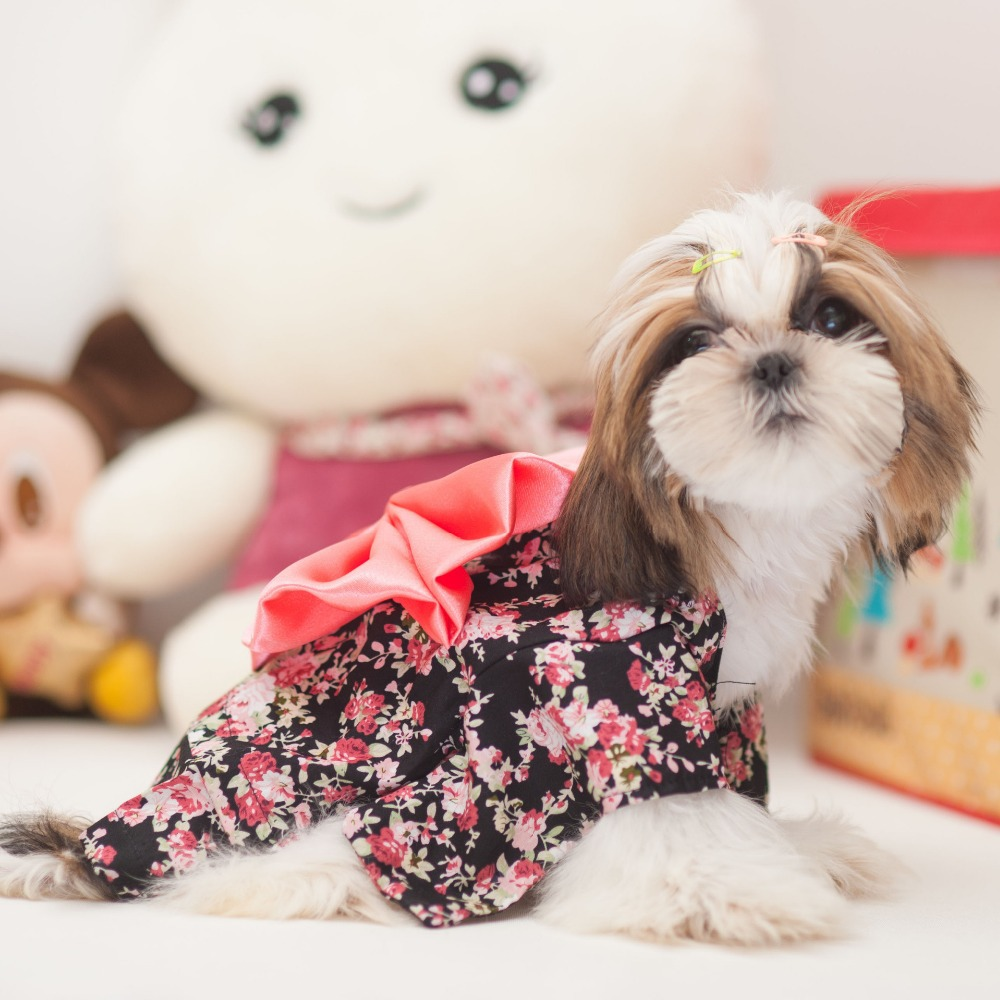 2014 new high quality printed kimono pets cloth large butterfly knot lovely and delicate pet gift(China (Mainland))