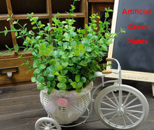 popular plants decor