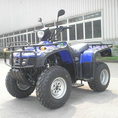 atv 250cc eec quad bike(ATV250-026)(China (Mainland))