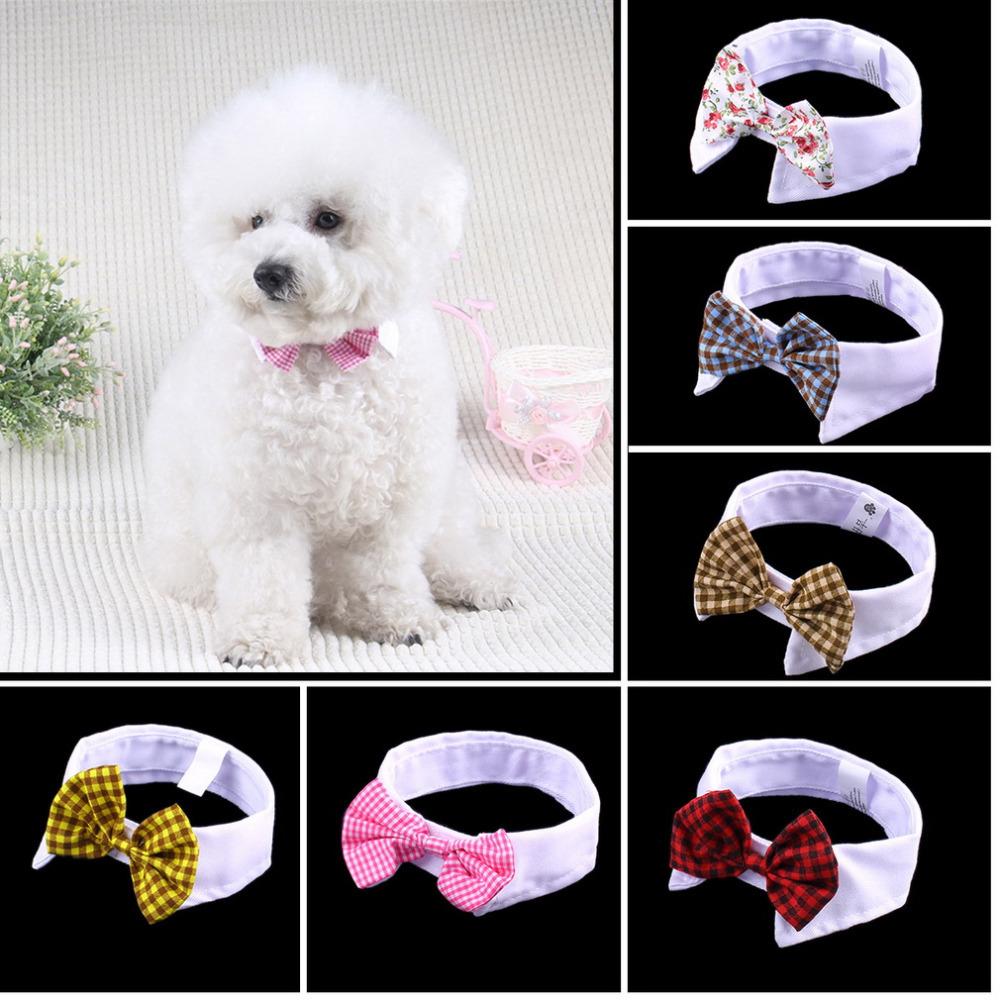 online kaufen gro handel hochzeit hund kragen aus china. Black Bedroom Furniture Sets. Home Design Ideas