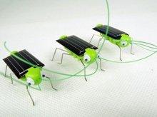 Wholesale - Solar Grasshopper / Grasshopper / Locust / Crickets, Children's Toys, Educational 100pcs/lot+Free Shipping(China (Mainland))