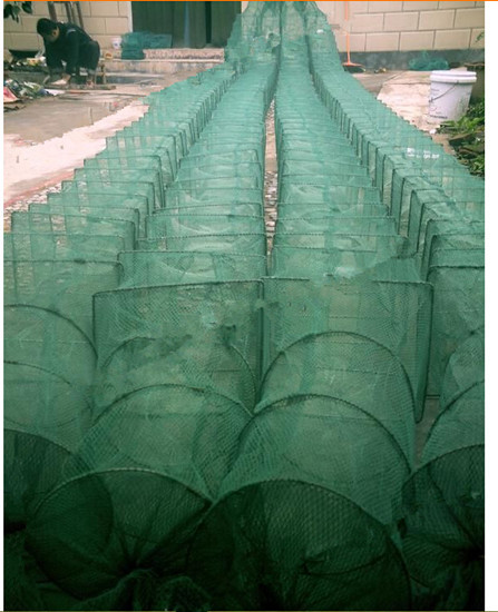 5m 25 section fishing net 2015 new fishing net ground cage china potes outdoor pesca fishing network fish trap rode Shrimp cage(China (Mainland))