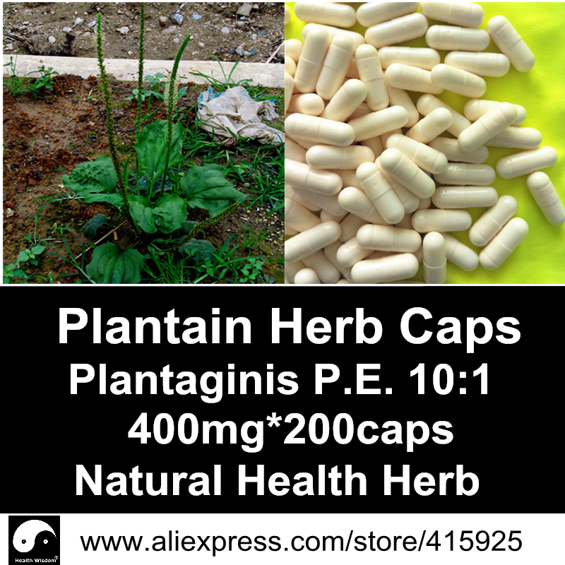 Plantain Herb Extract Powder Capsule 400mg*200caps Natural Health Care Herbal Plantaginis Dietary Supplements Plantago