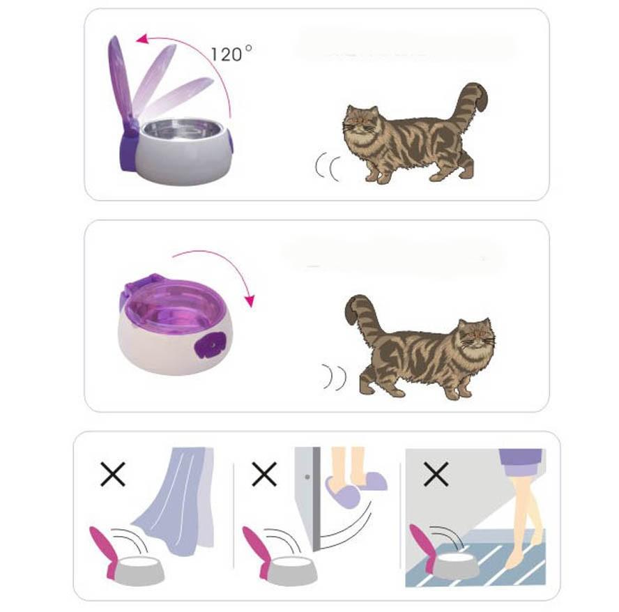 고양이 그릇 디스플레이 (3)