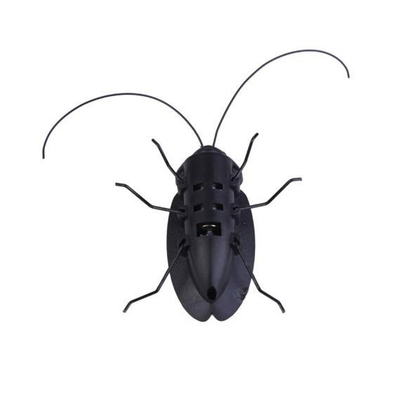 Solar Power Energy Cockroach 6 Legs Black Children Insect Bug Teaching Fun Gadget Toy Gift ES88(China (Mainland))