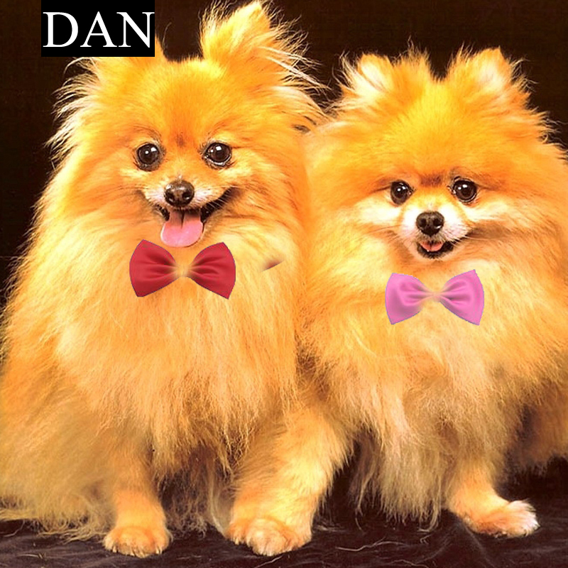 Hot Sale 1 Piecess Cute Fashion Dog Cat Pet Puppy Toy Kid Cute Bow Tie Necktie Collar Clothes(China (Mainland))