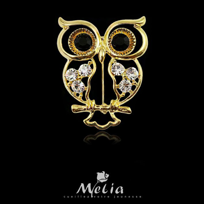 Fashion accessories classic crystal brooch elegant owl brooch personalized cartoon pin(China (Mainland))
