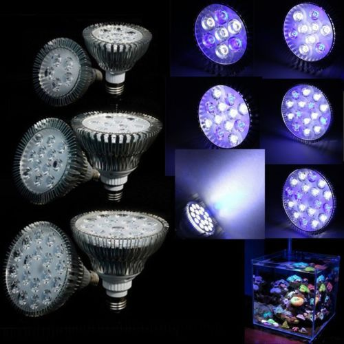 Wholesale E27 21/27/36/45/54W LED Coral Reef Grow Light High Power Fish Tank Aquarium Lamp LED Bulbs for Hydroponics(China (Mainland))