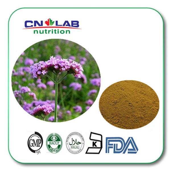 The Top Selling of Natural Verbena officinalis extract manufacturers,food supplement verbena officinalis extract 500g/lot<br><br>Aliexpress
