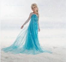 high quality new 2015 frozen elsa anna princess dresses children girls snow queen cosplay masquerade dress fancy costume(China (Mainland))