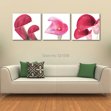 Modern Wall Art Home Decoration Printed Oil Painting Pictures Canvas Prints No Frame 3 Piece Africa Red Calla Lily Flowers(China (Mainland))