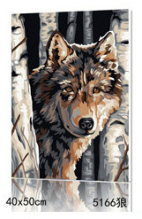 NEW DIY Coloring by Numbers Digital Oil Painting With frame Wall Art Canvas Pattern Home Decor Animals Wolf 5166 40*50cm