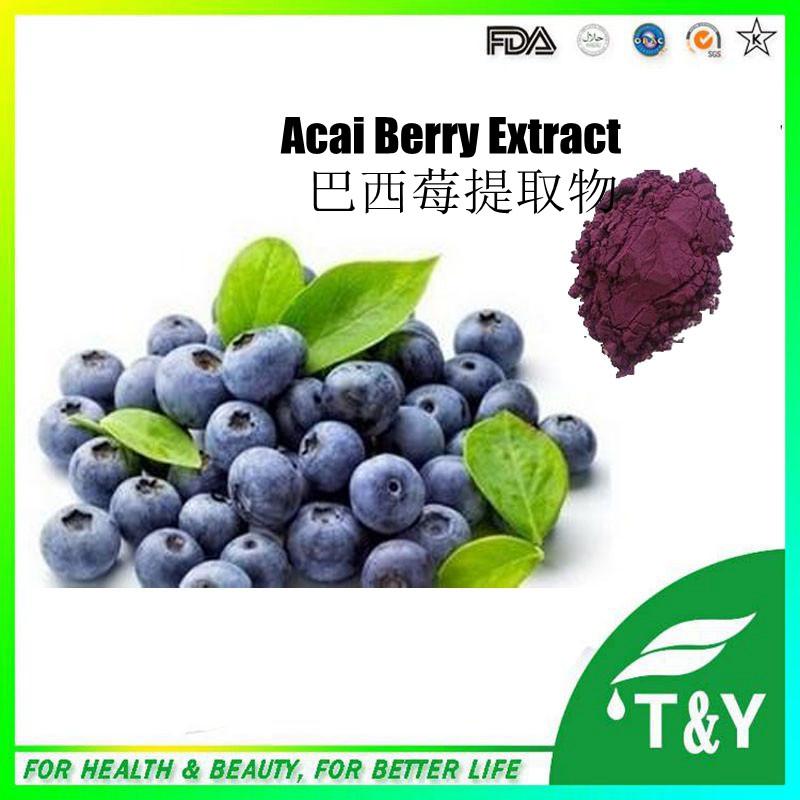 Фотография Factory supply 100% natural Acai berry extract 10:1/acai berry powder/acai berry powder organic 500g/lot