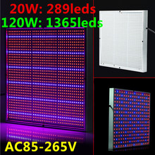EasyHydroGrow 20W 120W High Power 2835smd 85-265V LED Grow light Panel For Medical Flower Plants Vegetative and Flowering Stage(China (Mainland))