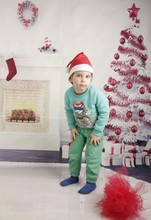 300CM*200CM(about 10ft*6.5ft) backgrounds Zebra stove Christmas gifts photography backdrops photo LK 1361