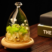 Popular DIY Glass Landscape Cover Vase Characteristic Gift Micro #75134(China (Mainland))