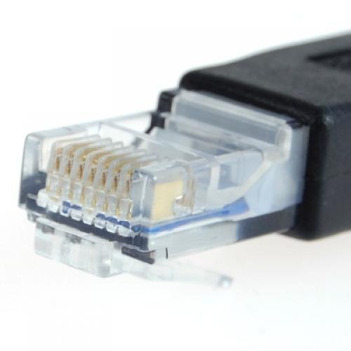 WSFS Wholesale 2 X USB mother turn RJ45 convex type 8 p8c adapter<br><br>Aliexpress