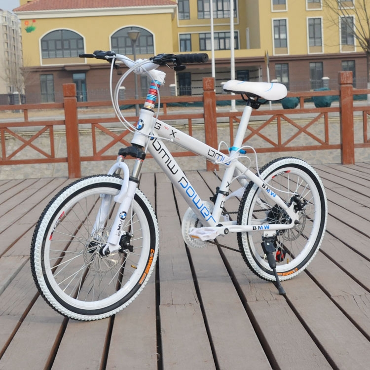 Hot Sale Hummer Mountain Bike 20 Inch Variable Speed Double Disk Brake Folding Buggy One Wheel Promotion(China (Mainland))