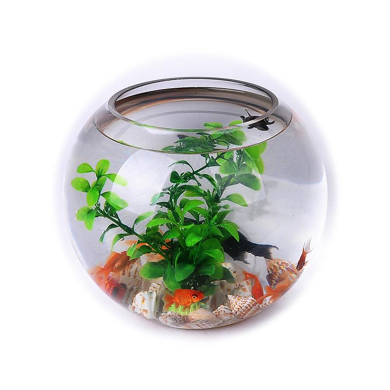 Ronde en verre fish tank promotion achetez des ronde en for Aquarium rond prix