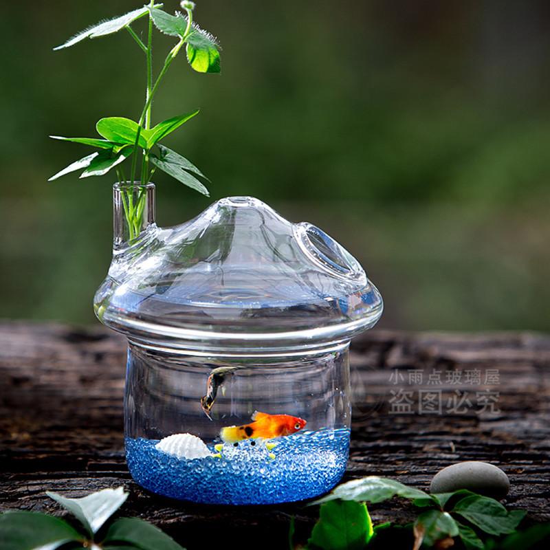 Aquariums en verre promotion achetez des aquariums en for Promotion poisson aquarium