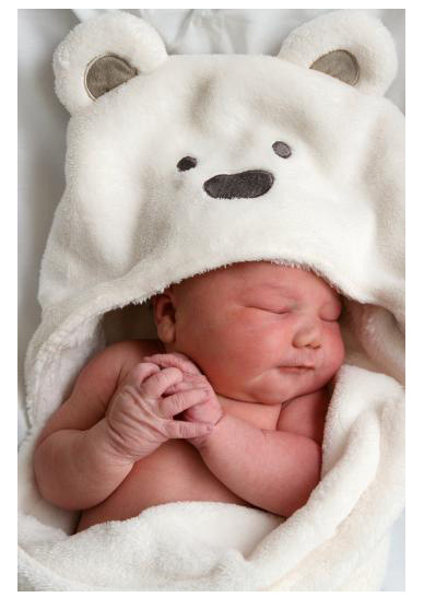 Free shipping Animal shape baby hooded bathrobe / baby bathrobe / baby bath towel / baby blankets / neonatal hold to be(China (Mainland))