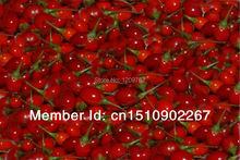 20 Buy one get one goji berry The king of Chinese wolfberry medlar bags in the