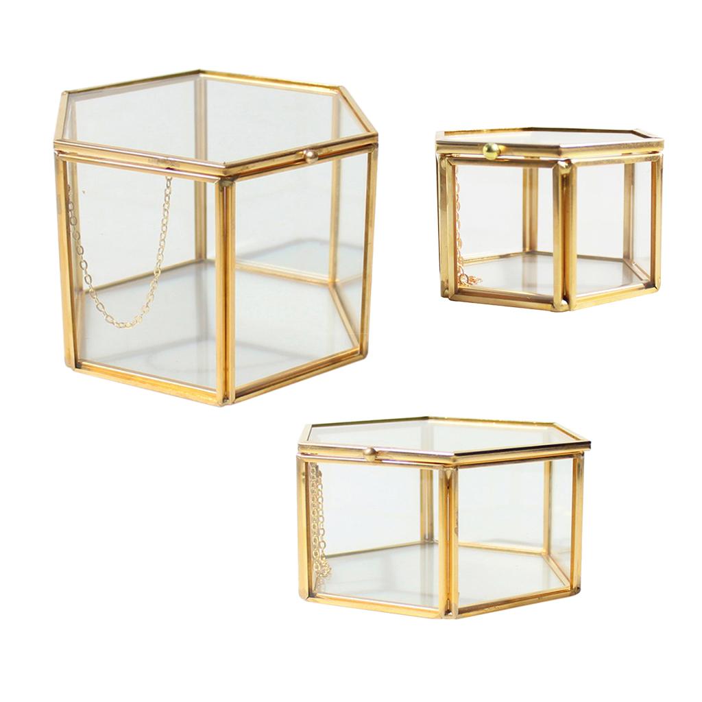 Various Irregular Glass Geometric Succulent Planter Vase Terrarium Fern Moss Air Plant Display Container for Home Garden Decor