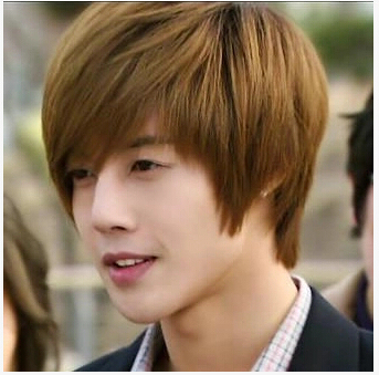 Synthetic Hair Mens Wig