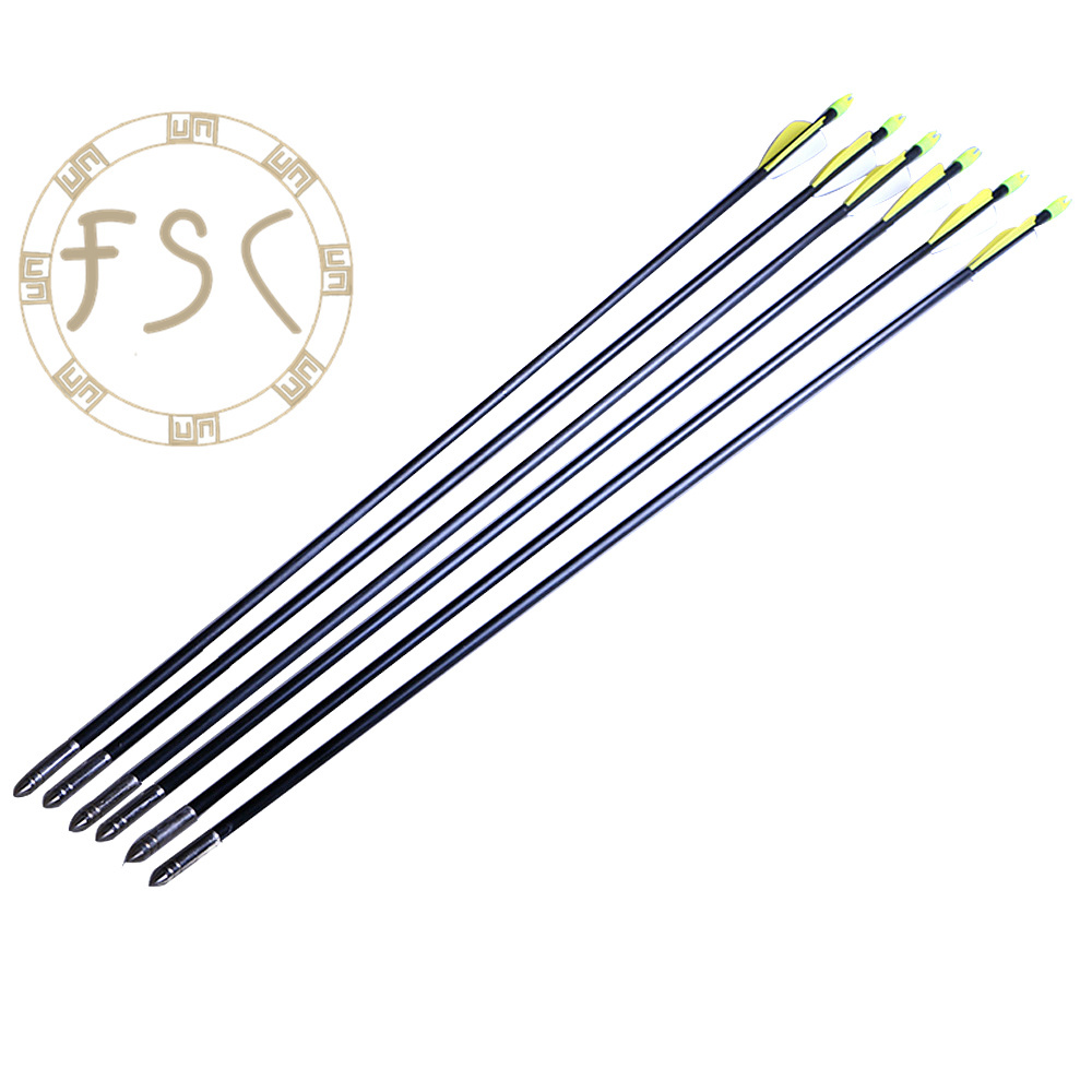 Special Promotions 12PCS Archery Fiberglass Arrows Target Practice Hunting Arrows For Compound Bow or Long Bow Free Shipping<br><br>Aliexpress