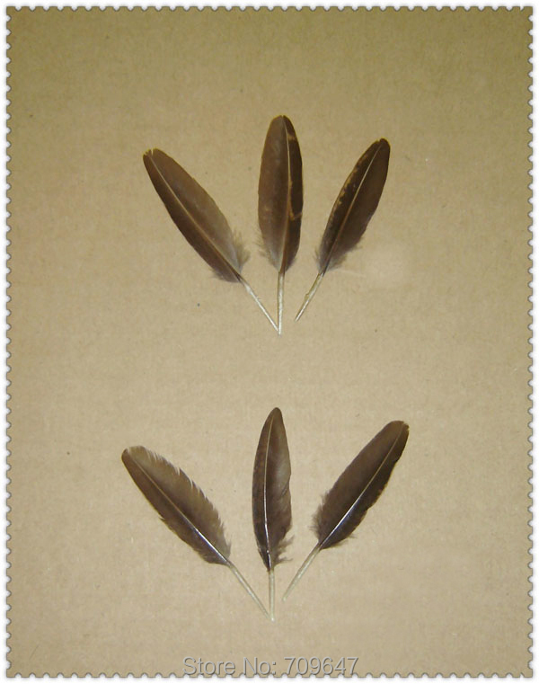 NEW!50Pcs/Lot!5-6cm Unique Nature Golden Pheasant Small Quill Feathers,Small Golden Wing Feathers FREESHIPPING(China (Mainland))