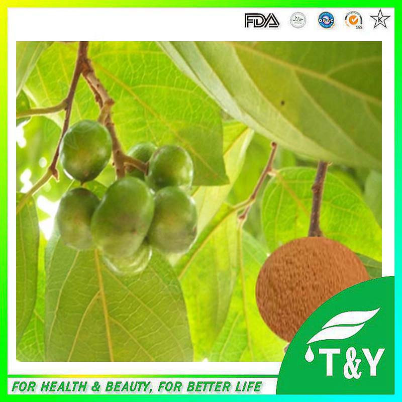 High Quality 100% Natural Pygeum Africanum Bark Extract<br><br>Aliexpress