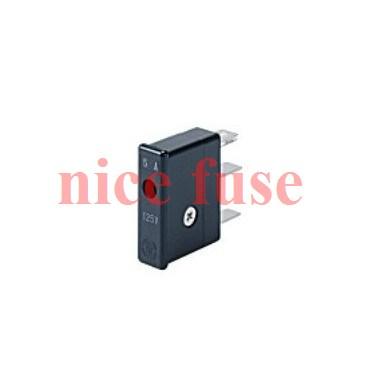 Japanese Daito fuse FUSE-P413L new original FANUC FANUC DAITO 1.3A<br><br>Aliexpress