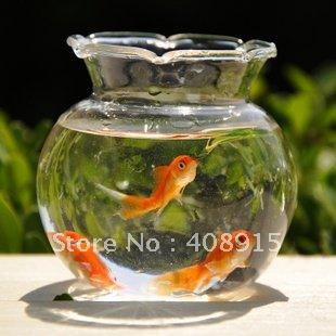 Mini vase mini aquarium fish tank dia75xh70mm glass for Small fish bowl