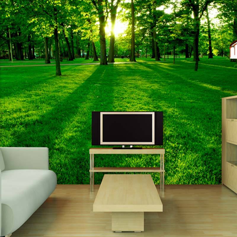 Tv backdrop painted natural scenery living room sofa for 3d wallpaper for bedroom