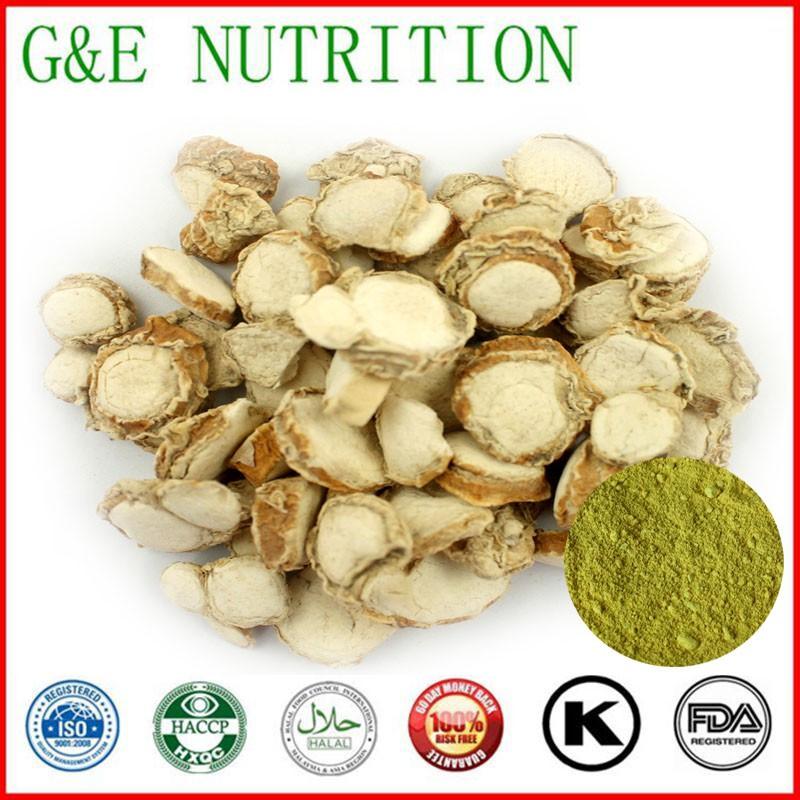 Herb Medicine Kaempferol Extraction   powder    10:1   700g